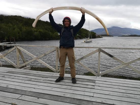 27 os de baleine