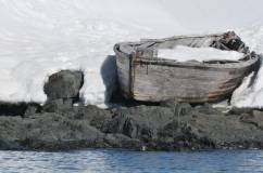 baleiniere